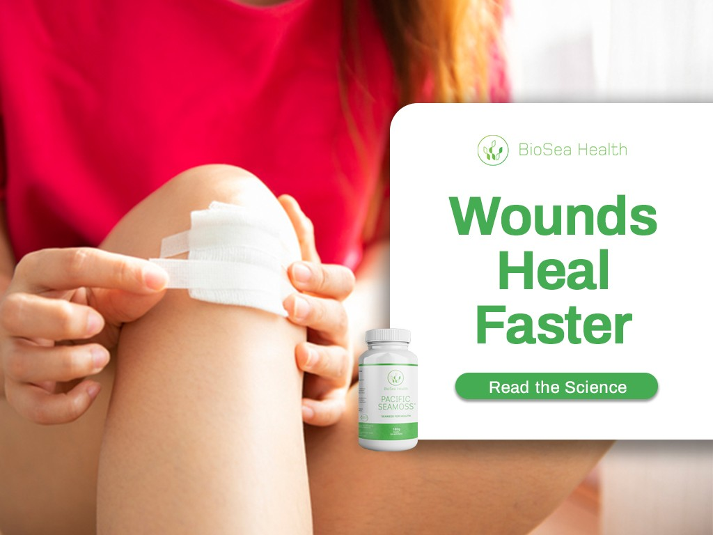 Wounds heal faster with seaweed. Use Pacific Sea Moss